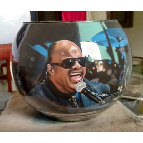 77 Zandschildering Stevie Wonder