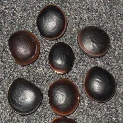 NR.81 Ojo de buey Equador 26-30 mm